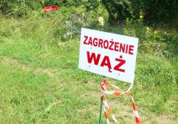dot. Fundacja Animal Rescue Polska